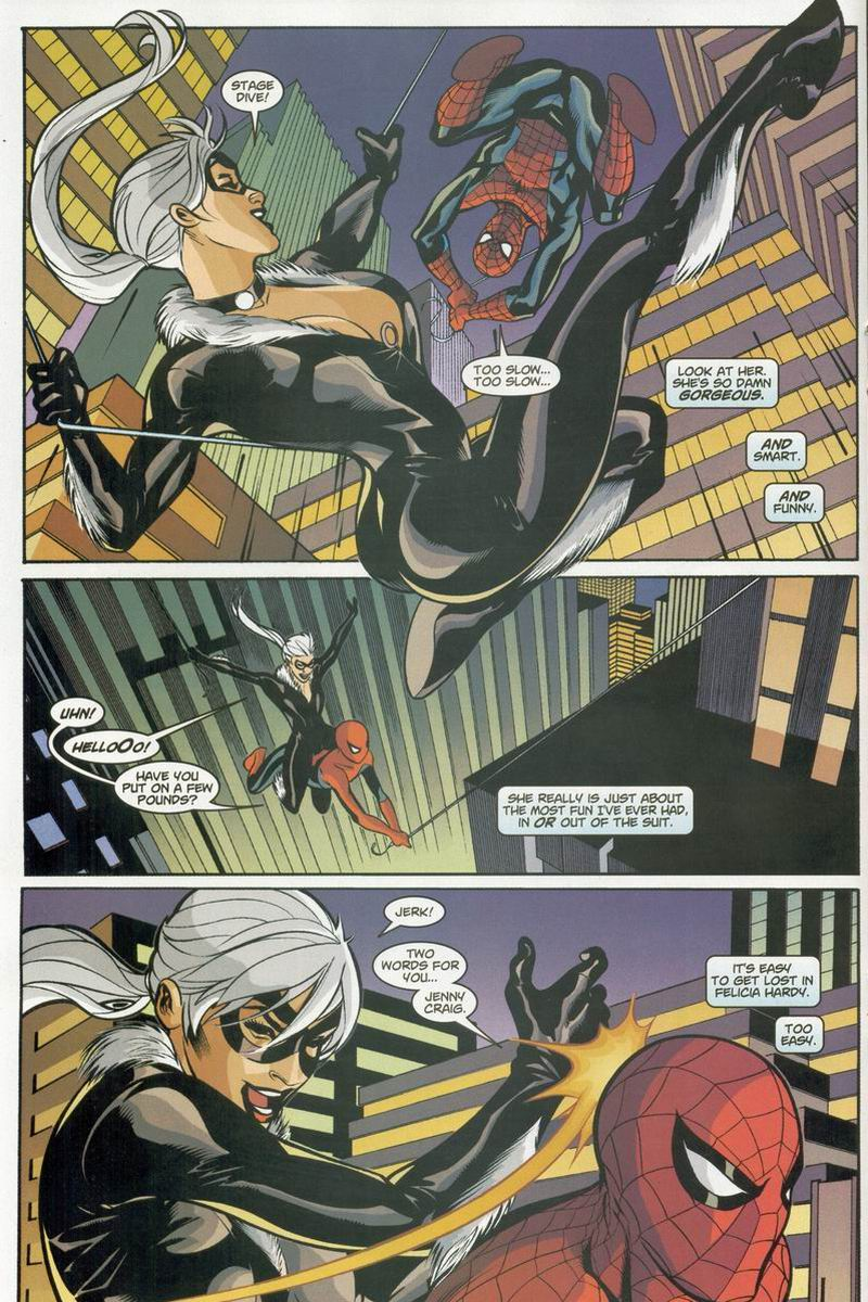 Spider-Man and the Black Cat The Evil That Men Do review