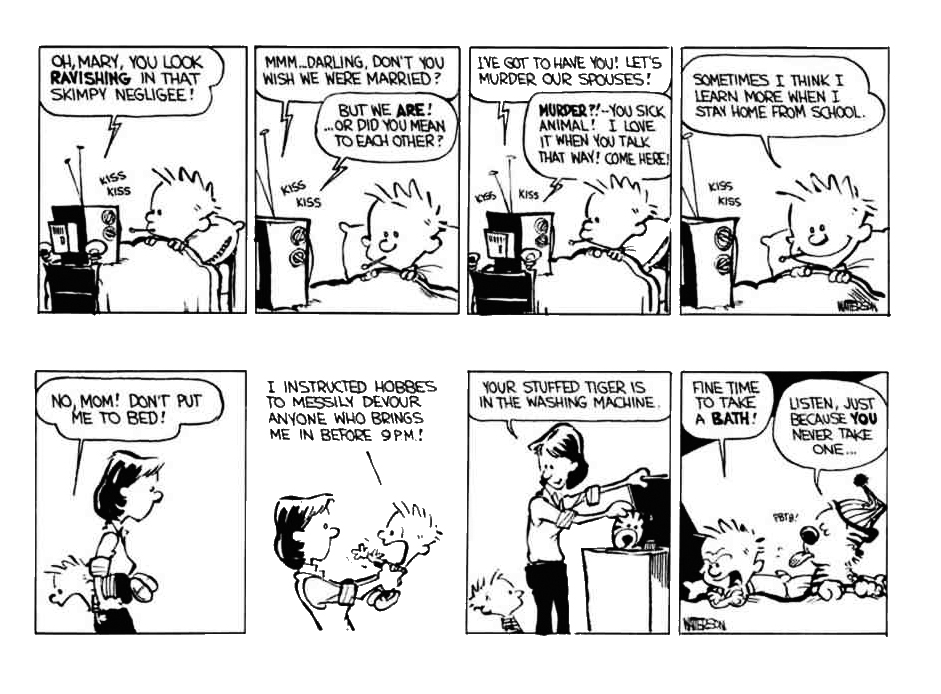 Calvin and Hobbes review
