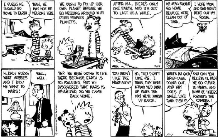 Calvin and Hobbes Weirdos from Another Planet review