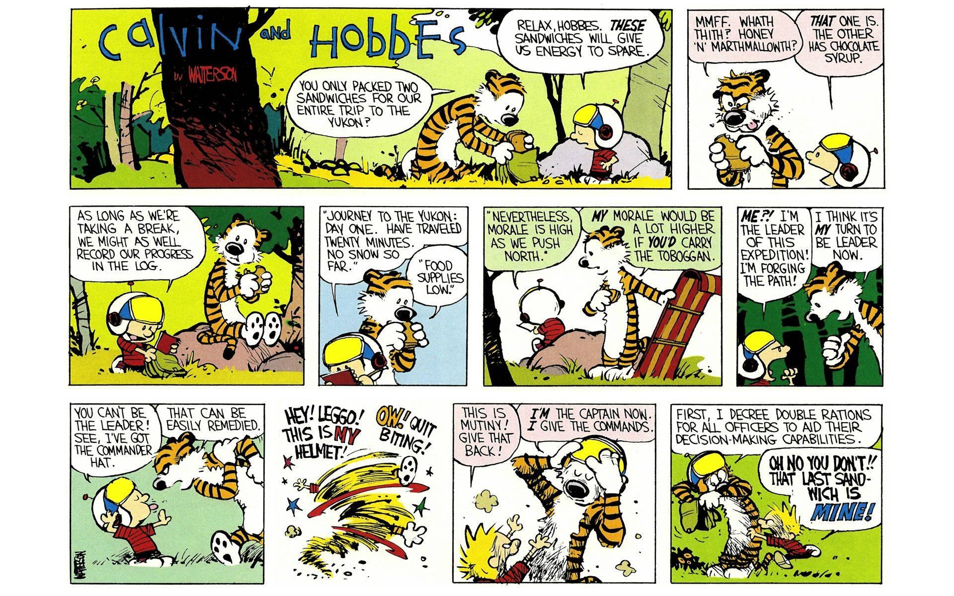Calvin and Hobbes Yukon Ho! review