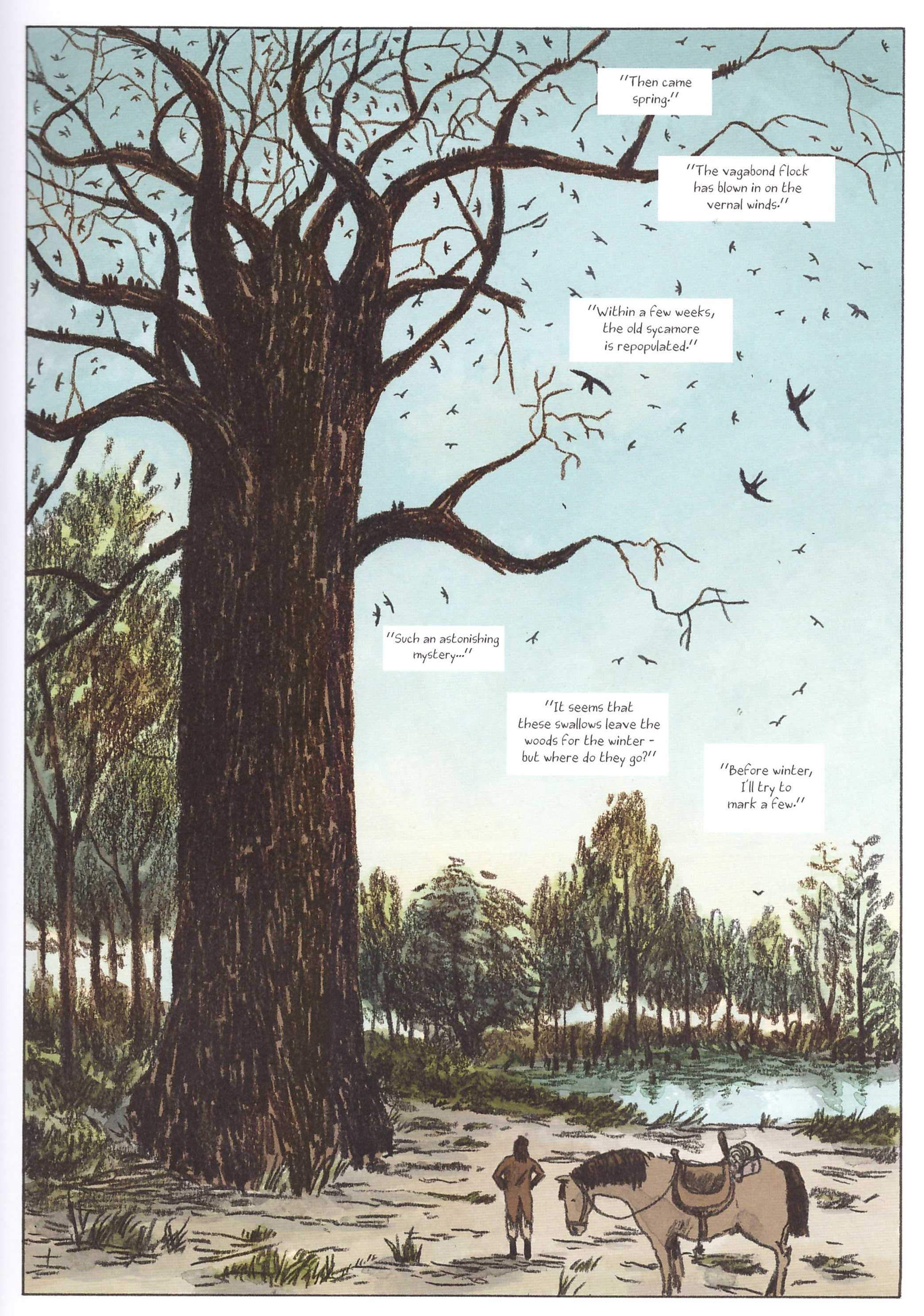 Audubon On the Wings of the World review