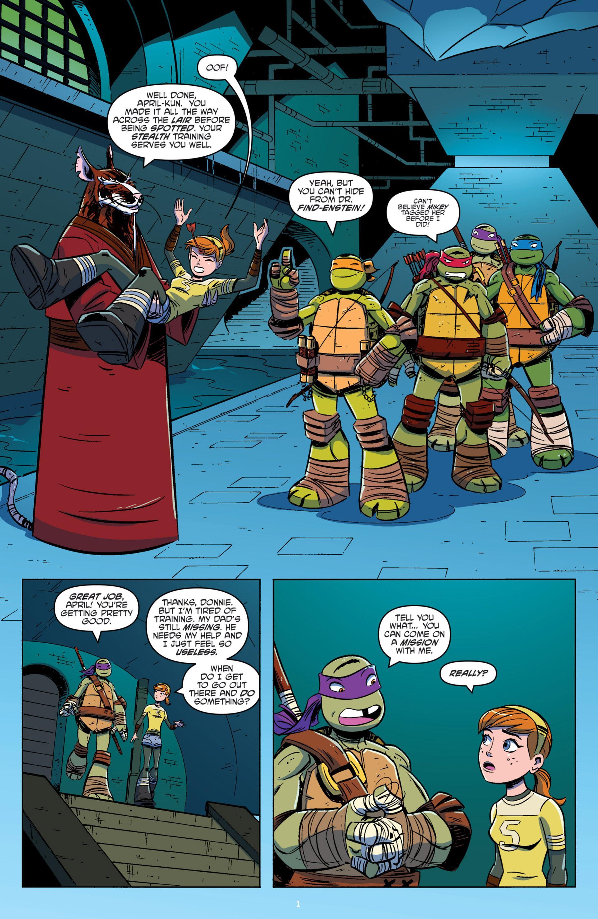 Teenage Mutant Ninja Turtles - New Animated Adventures Omnibus V1 review