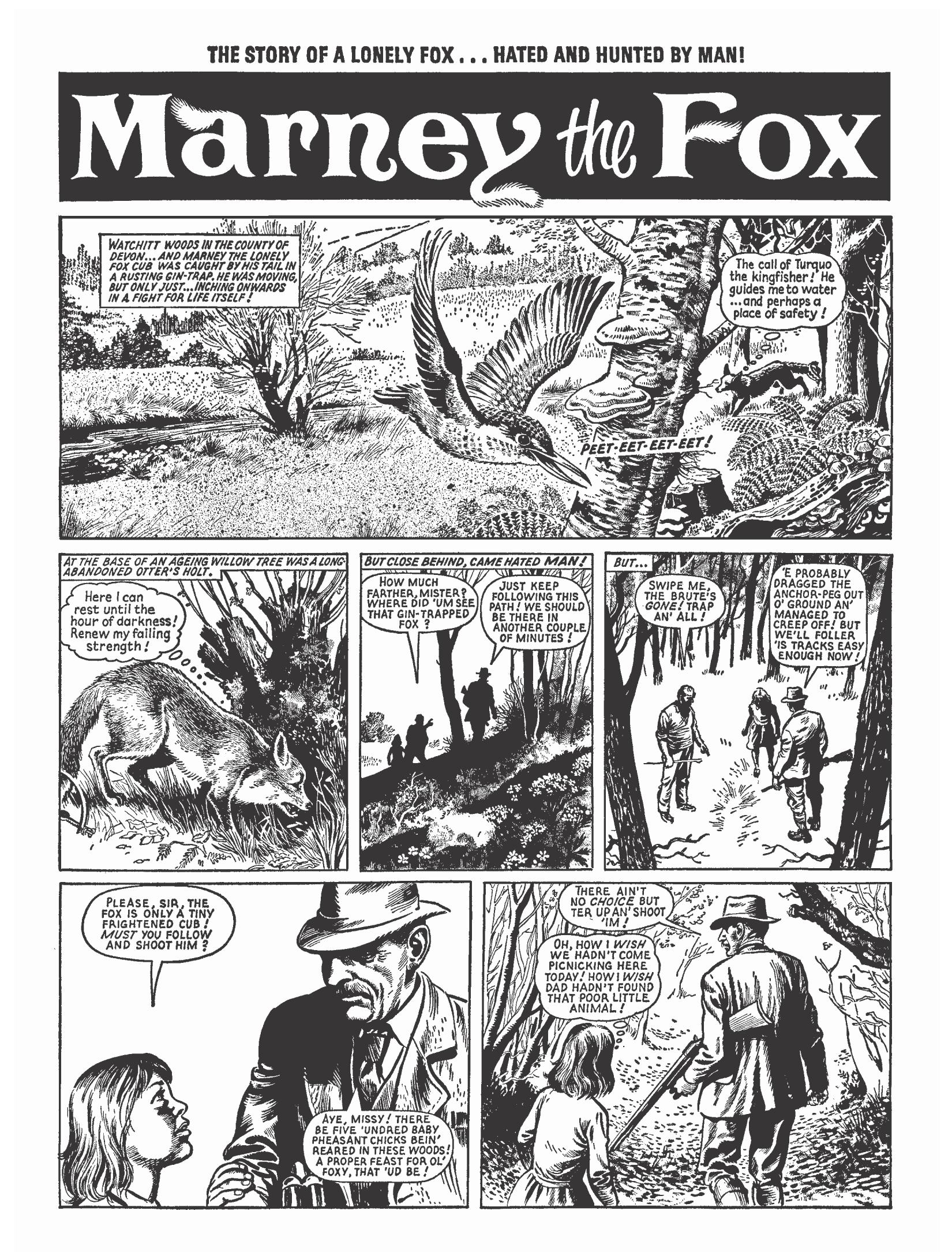 Marney the Fox review